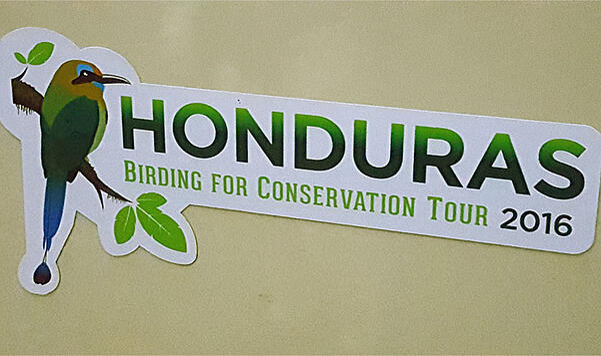 Birding-for-Conservation-by-DSJ.jpg
