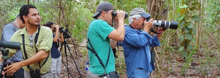 Birding-in-Belize-DSJ-blog-header.jpg