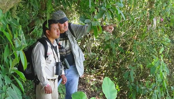 Birding at Mirador Rey Tepepul by Debbie Sturdivant Jordan.jpg