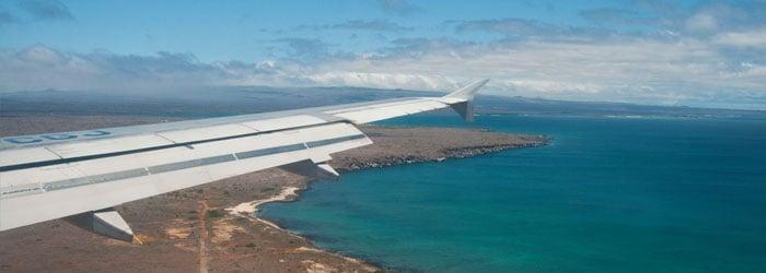 Flight-by-Reinier-Munguia.jpg