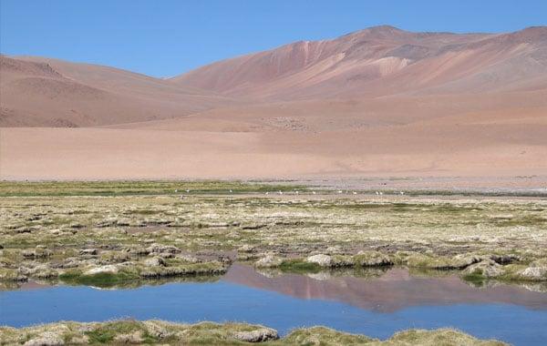 Atacama-by-Frank-Richmond-blog-inline