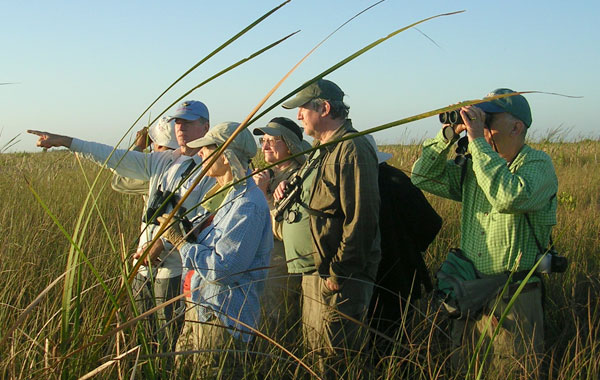 Birding-in-Cuba-by-Debbie-Sturdivant-Jordan-blog-inline.jpg
