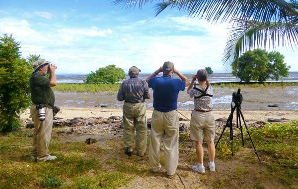 Birding-in-Panama-by-Ariel-Aguirre.jpg