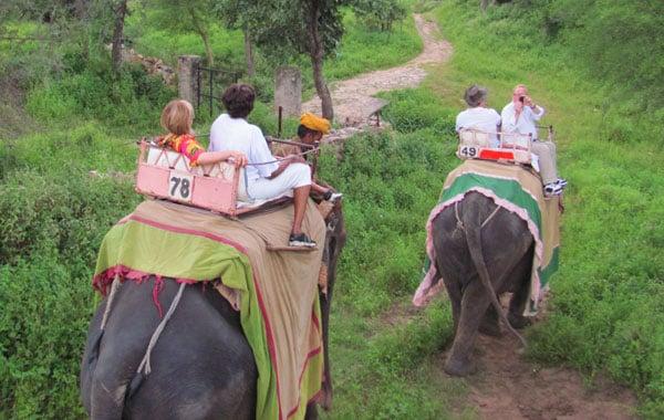 Elephant-ride-by-Lisa-Palmese-Graubard