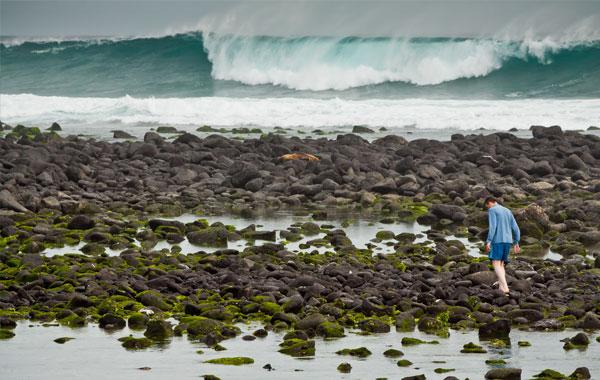 Exploring-the-Galapagos-stock.jpg