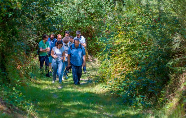Group-hike-ecotourism-stock
