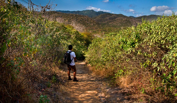 Machalilla-National-Park-stock