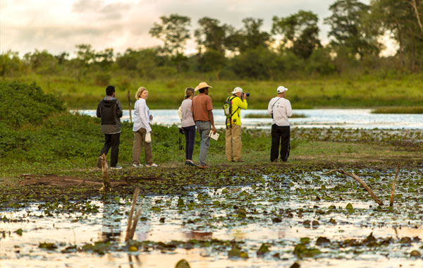 Photographers-in-the-Pantanal