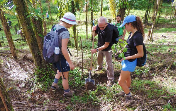 Reforestation-project-by-SCLC-blog-inline.jpg