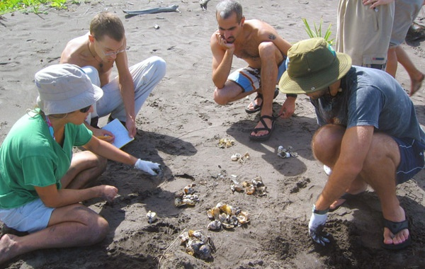 STC-volunteers-in-Costa-Rica-by-Sea-Turtle-Conservancy-blog-inline