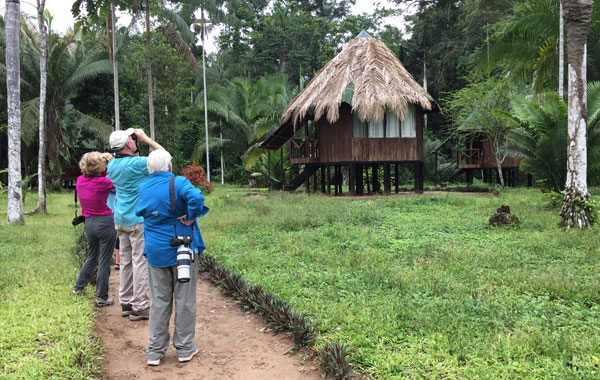 Tambopata-Province-by-Andrea-Holbrook-blog-inline-1.jpg