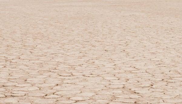 Desert-stock.jpg