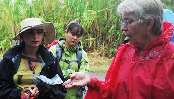 Professional development in Costa Rica by Joanna Livingstone