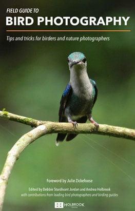 Bird-photograph-field-guide-lenews-thumb.jpg