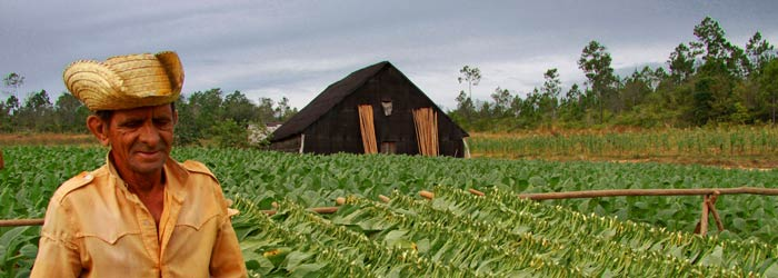 vinales-tobacco-farm-er-BY-Guillaume-Baviere.jpg